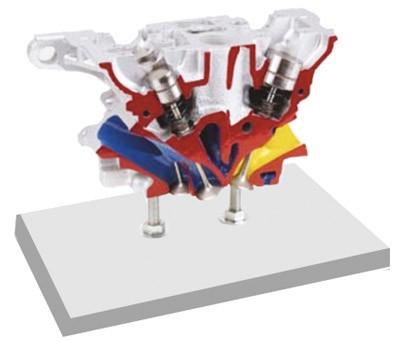 奥迪5阀气缸盖解剖模型