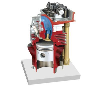 带凸轮轴的气缸和气缸解剖模型