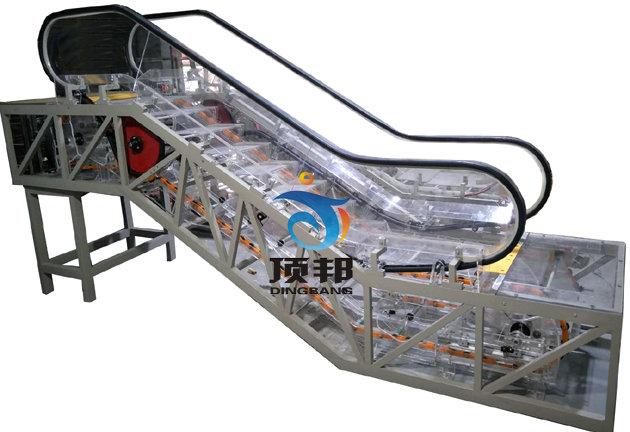 透明扶梯教学模型